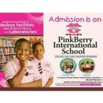 PinkBerry International School